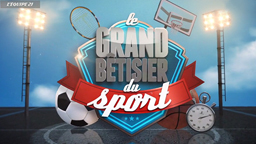 Le Grand Bêtisier du Sport