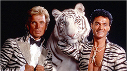 Captation A tribute to Siegfried & Roy